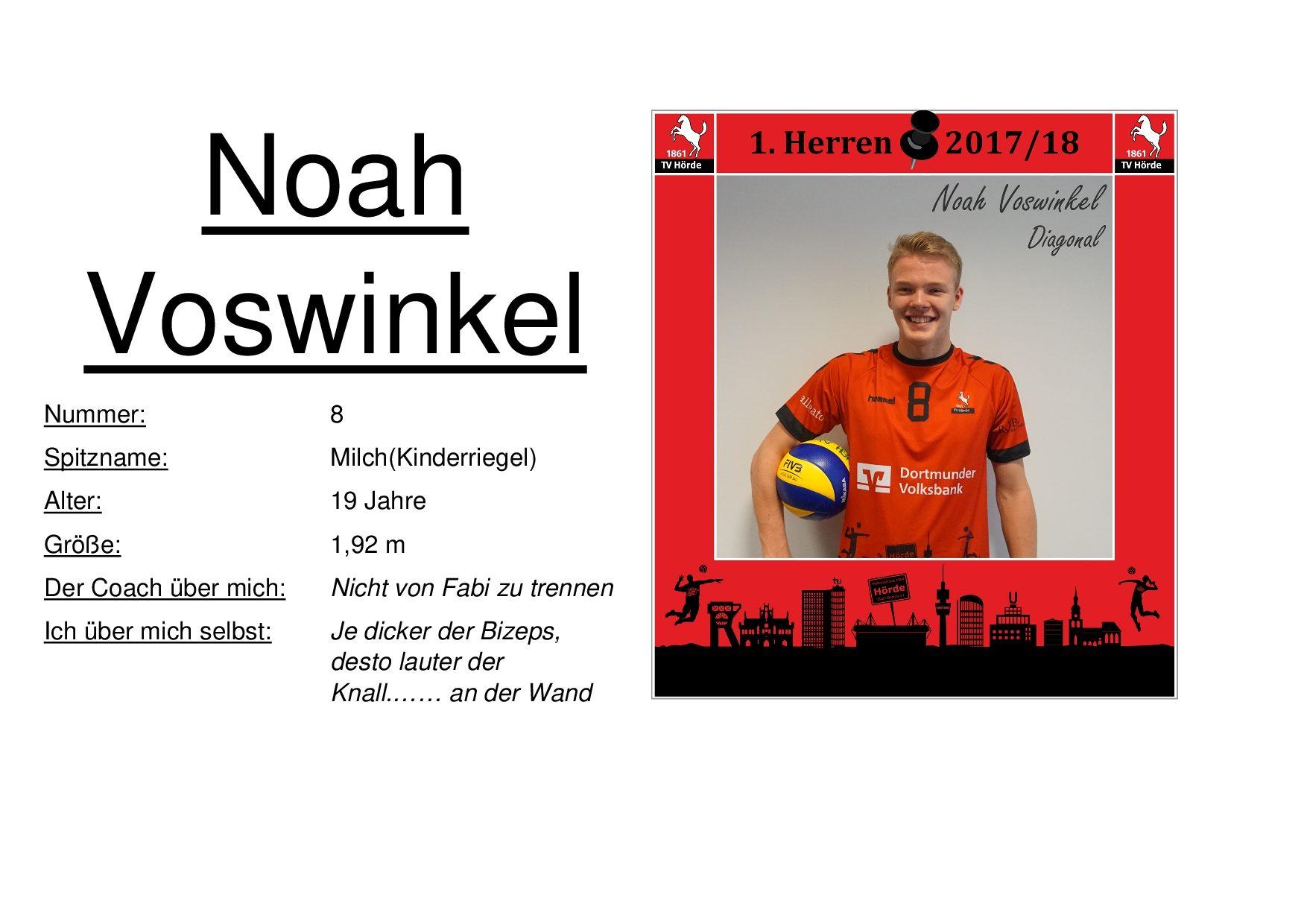Noah Voswinkel